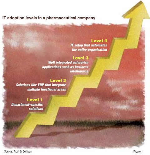IT adoption levels in a pharmaceutical company