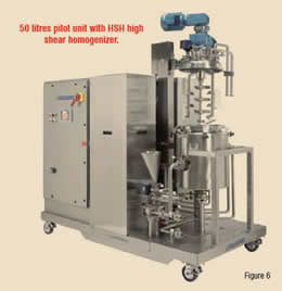 50 litres pilot unit with HSH high shear homogenizer