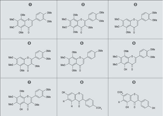 Natual Polymethoxyflavones and Hydroxylated Polymethoxyflavones Isolated HL-60 Inhibitors