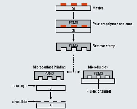 A schematic depiction of the formation of a PDMS stamp using a silicon (Si) master