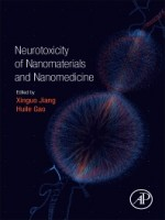 Neurotoxicity of Nanomaterials and Nanomedicine, 1st Edition