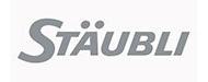 satubli-webinar logo